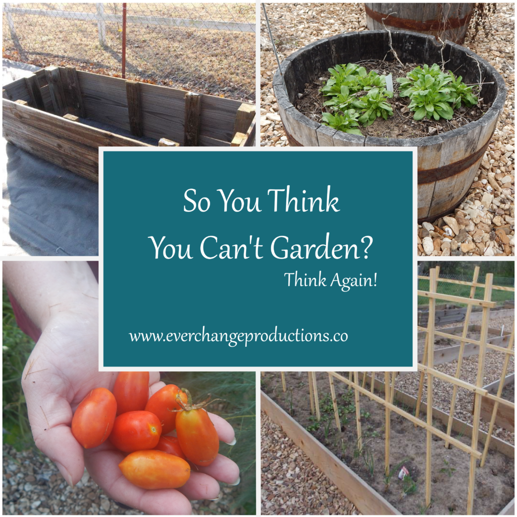 So You Think You Can't Garden? Tips for a Small Space Garden