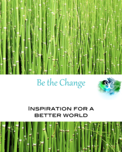 Be the Change you wish to see. This category is filled with inspiration to do your part in making the world a better place. You'll find ideas for random acts of kindness, non-profits to support and local citizens trying to make their community better.