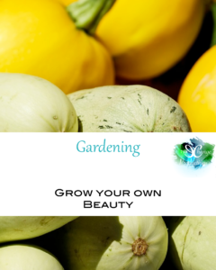 Whether living in apartment or have clay soil, gardening is possible! If you're wanting to learn how to garden in containers, amend soil, compost, or garden in raised beds, these blogs posts are for you.